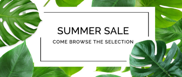 Blue Magnolia's Summer Sale